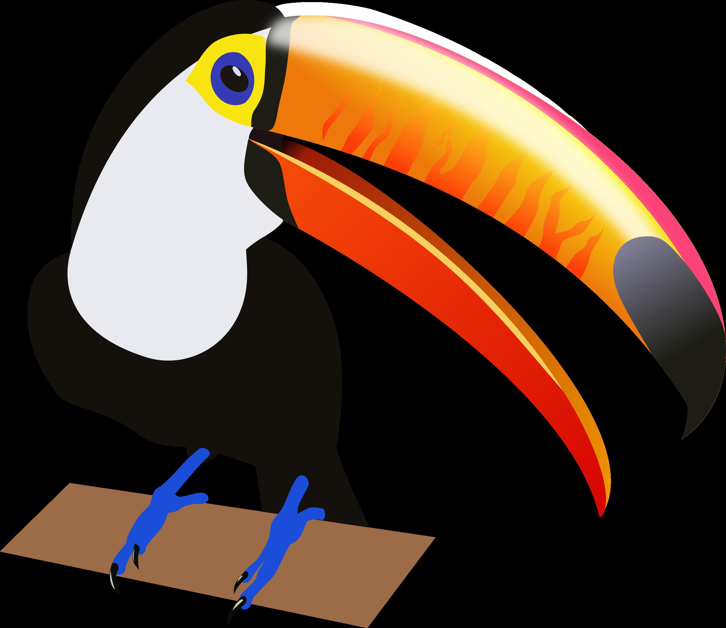 Toucan Clip Art.