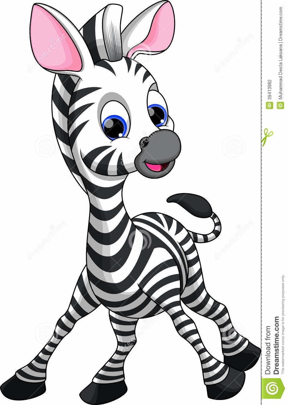 Baby zebra png.