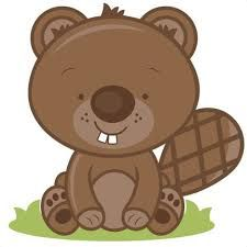 Image result for cute beaver illustrations.