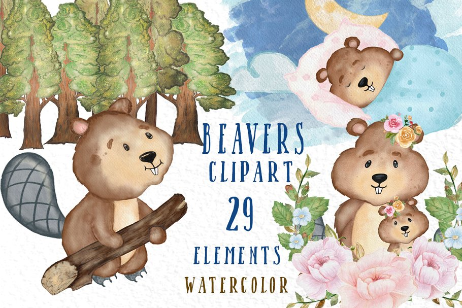 Beaver clipart Cute forest animals ~ Illustrations ~ Creative Market.