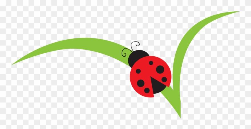 Lady Beetle Clipart Cute.