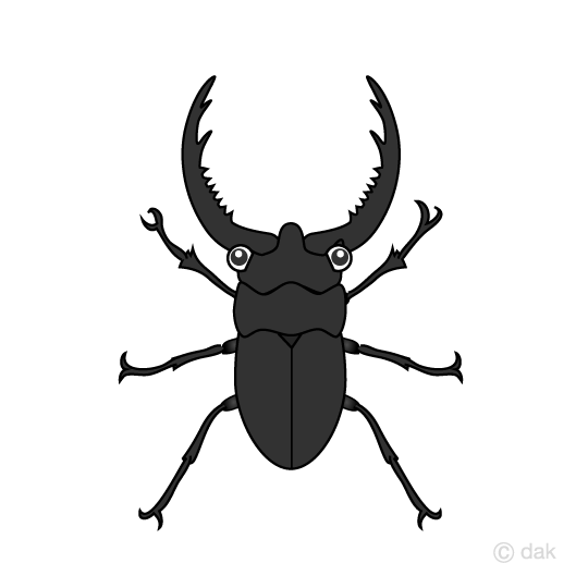 Beetle clipart cute, Beetle cute Transparent FREE for.