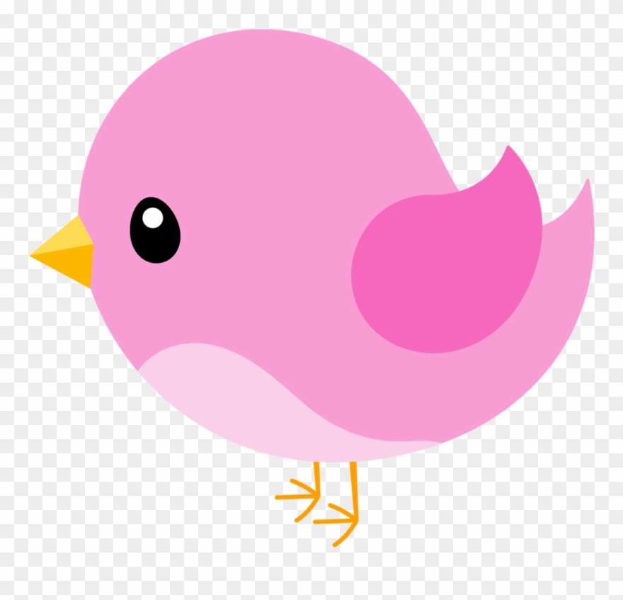 ○••°‿✿⁀birdies‿✿⁀°••○ Bird.