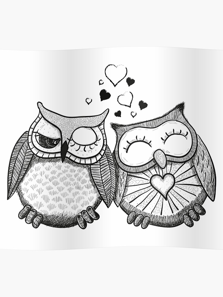 Cute black and white owl couple.