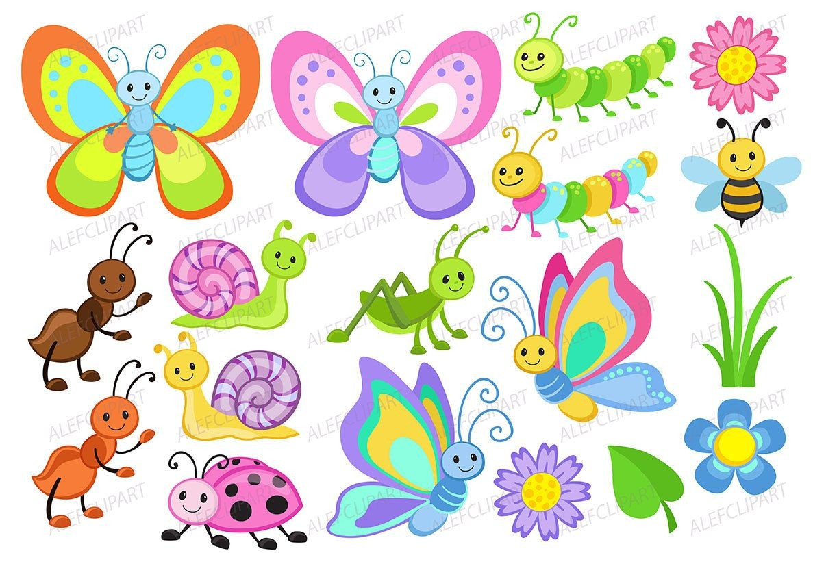 Cute bug clipart 5 » Clipart Station.
