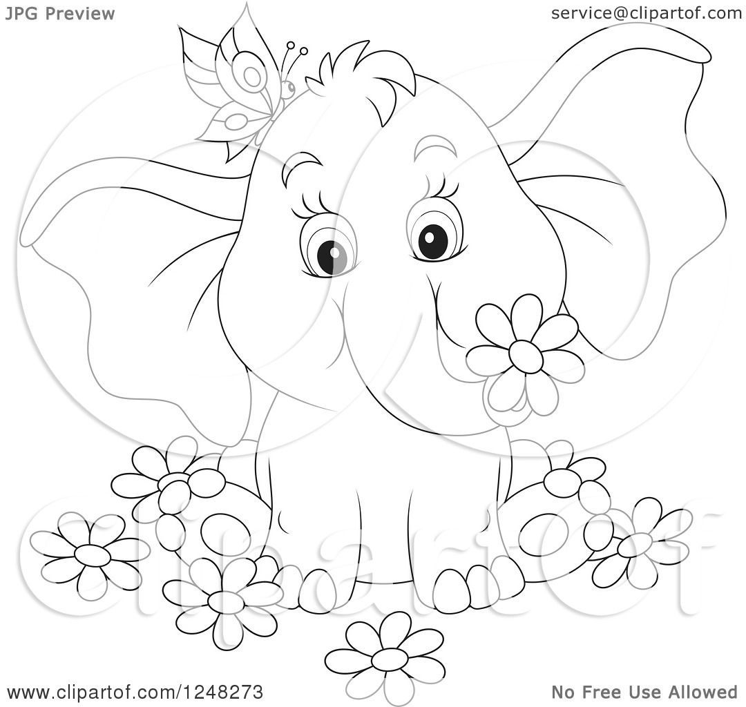 Clipart of a Black and White Cute Elephant with a Butterfly and.