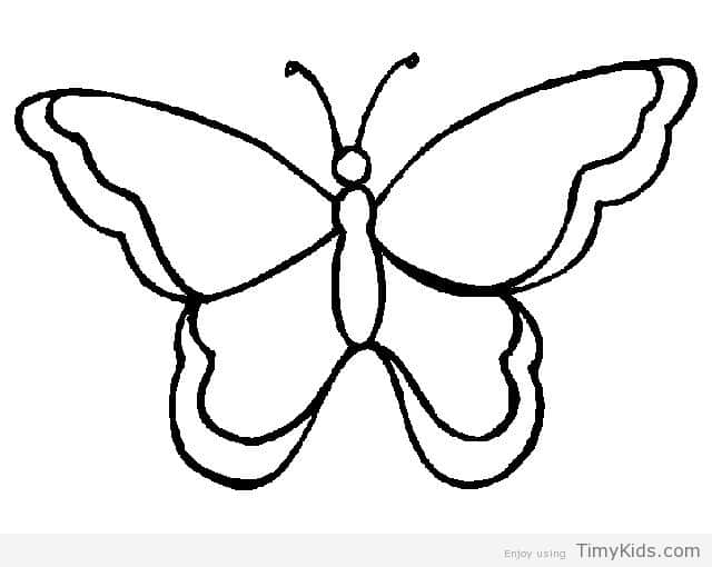 Butterfly Drawing Black And White.