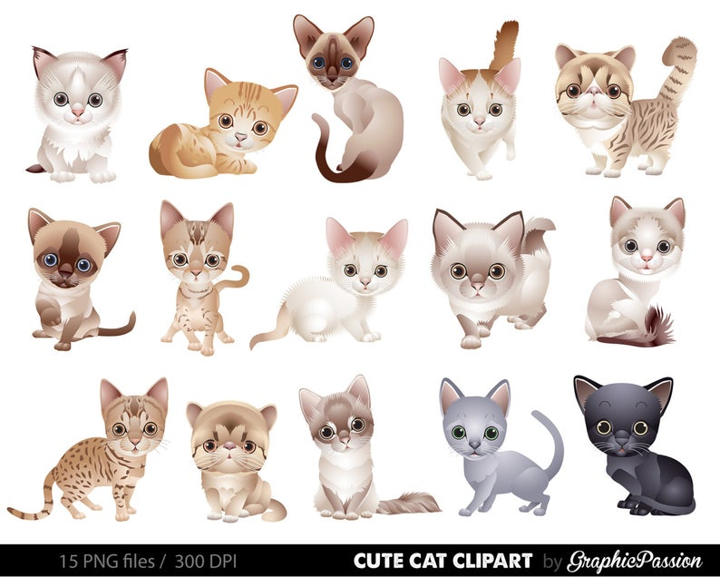 Cat Clipart Clip Art, Kitten Clipart Clip Art Cute animals clipart Kitten  illustration For Personal and Commercial Use/ INSTANT DOWNLOAD.