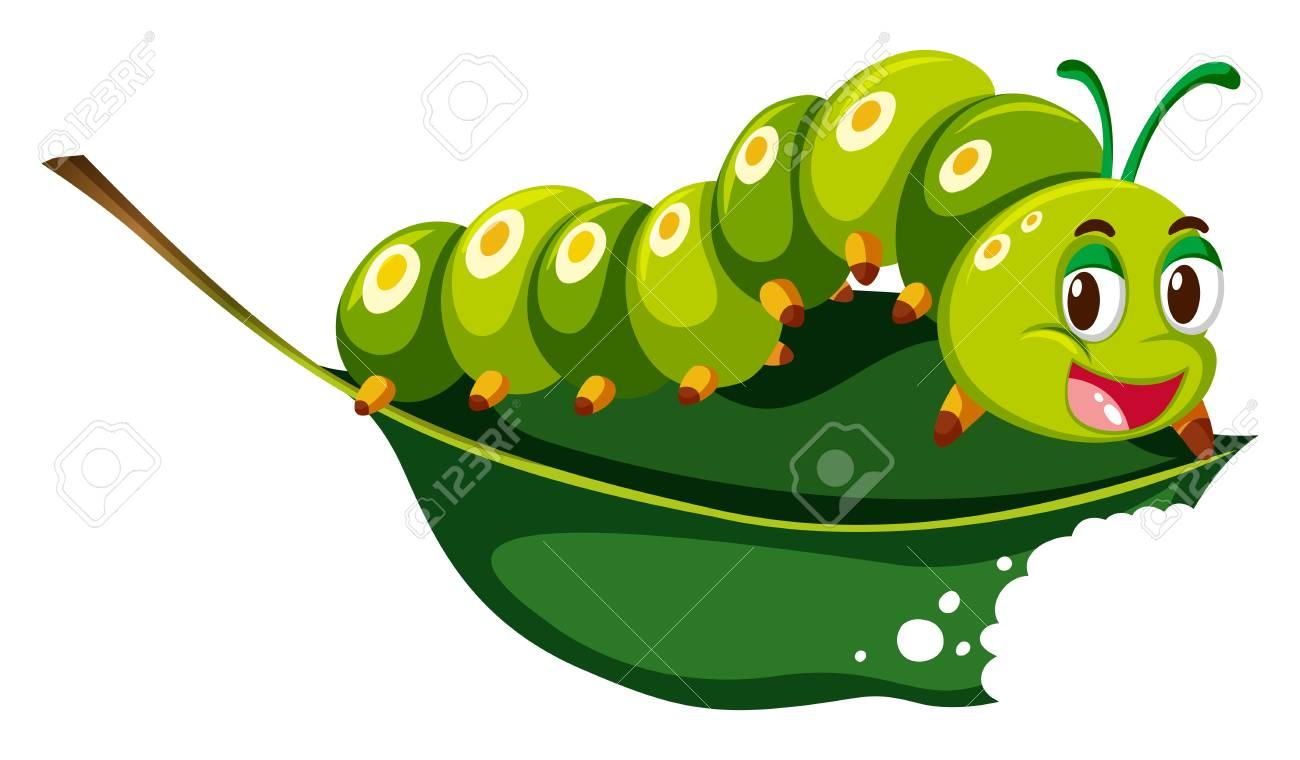 Cute caterpillar chewing green leaf illustration.