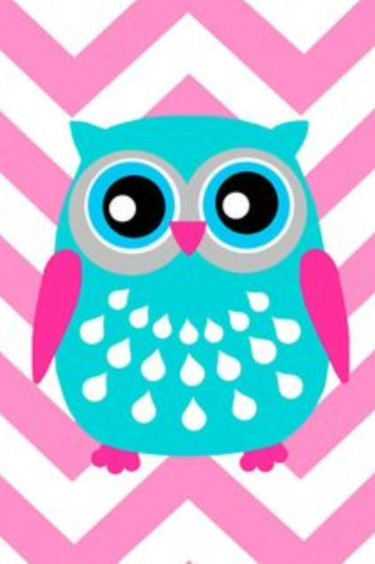 Isn't this chevron owl so cute??????? You can definitely put this.