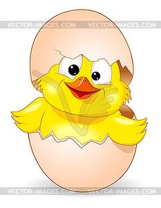 Cute chick was born.