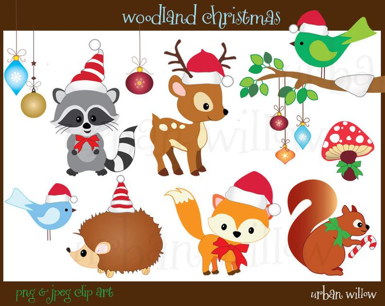 Christmas Animals Clipart, Cute animals Clipart, Digital Graphics Racoon,  Fox Clipart, Cute Bird on Branch, Hedgehog, Squirrel.