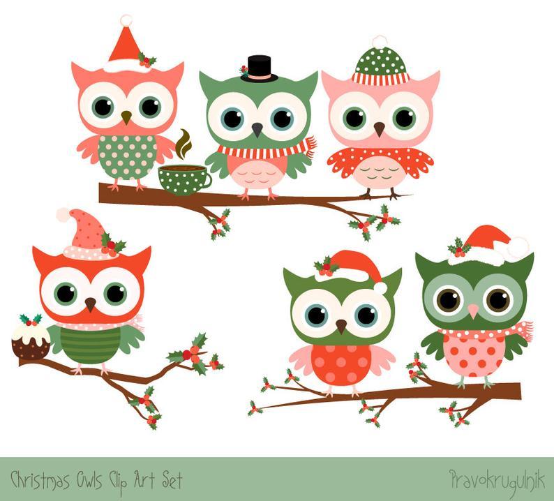 Christmas owl clipart set, Cute Christmas clipart, Cute owl clip art,  Winter clipart, Red owl drawing, Digital green owl on tree branch.