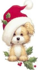 Cute Christmas Dog in Santa Cap.
