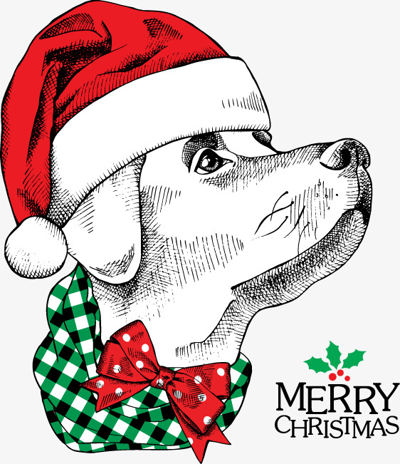 Christmas Dog Clipart (101+ images in Collection) Page 1.