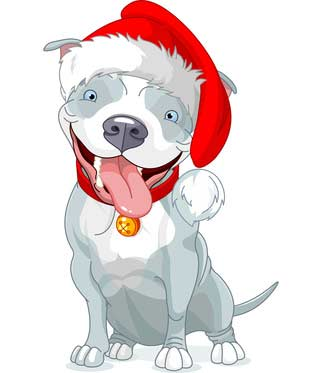 Pictures of Dogs for Christmas Season.