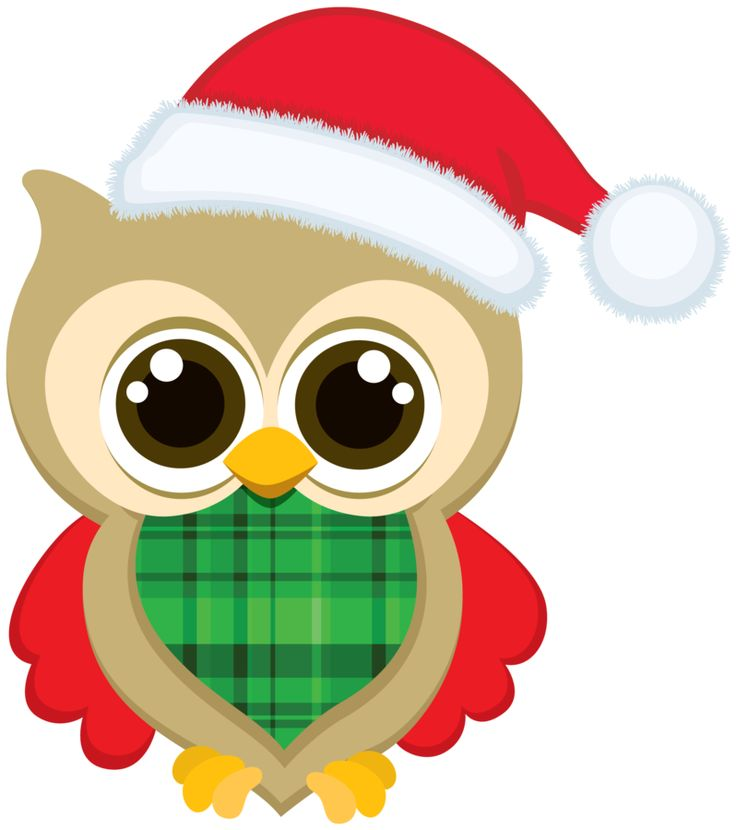cute christmas owl clipart 10 free Cliparts | Download ...