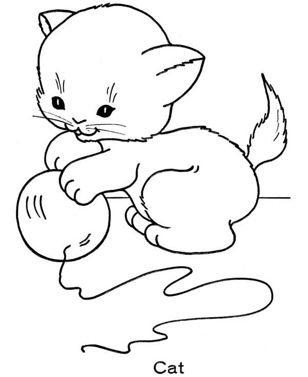 Cute Chubby Clipart Coloring Pages Clipground