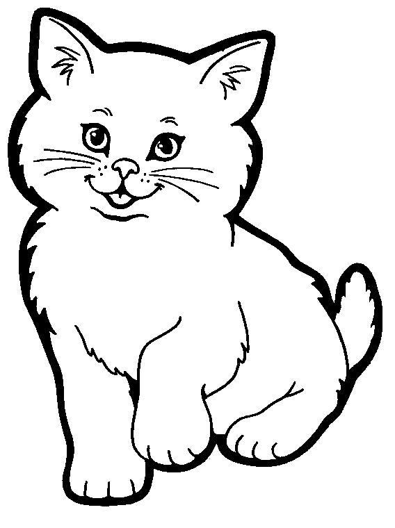 Cute Coloring Pages Of Baby Chubby Cat Clipart.