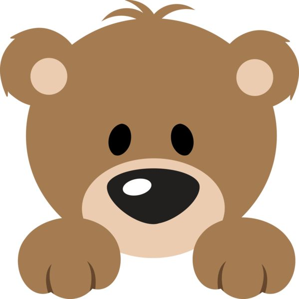 Cute bear clip art.