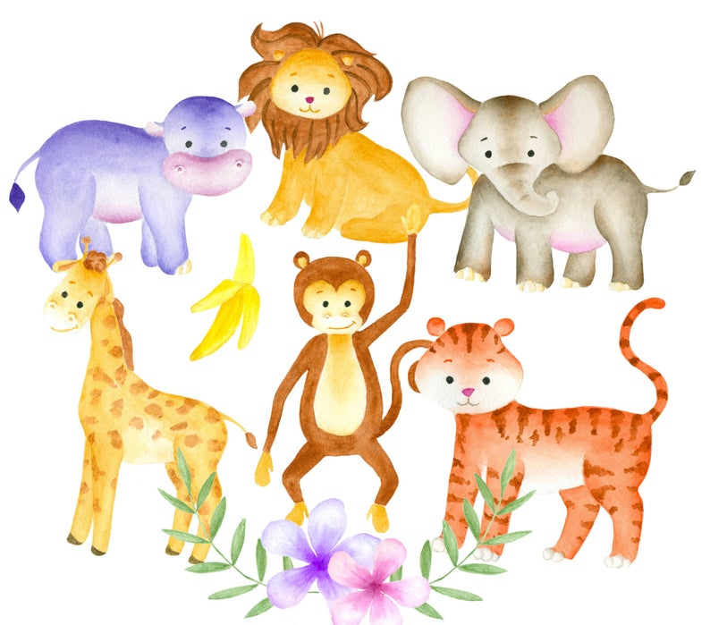 Jungle animals clipart, Watercolor animals clip art, Jungle clipart, Animal  illustration, Elephant clipart, Safari Clipart, Zoo Clipart.