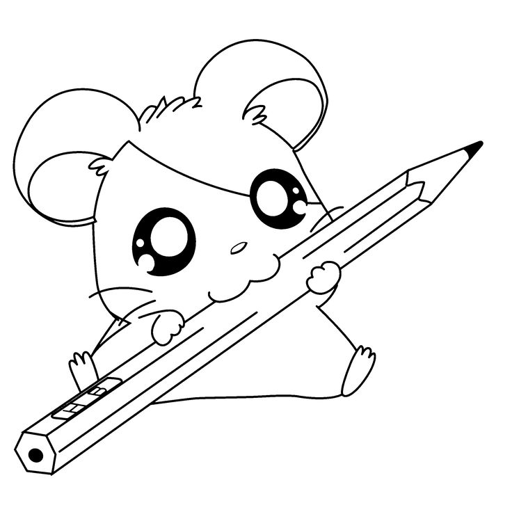 cute coloring pages of baby chubby cat clipart - Clipground