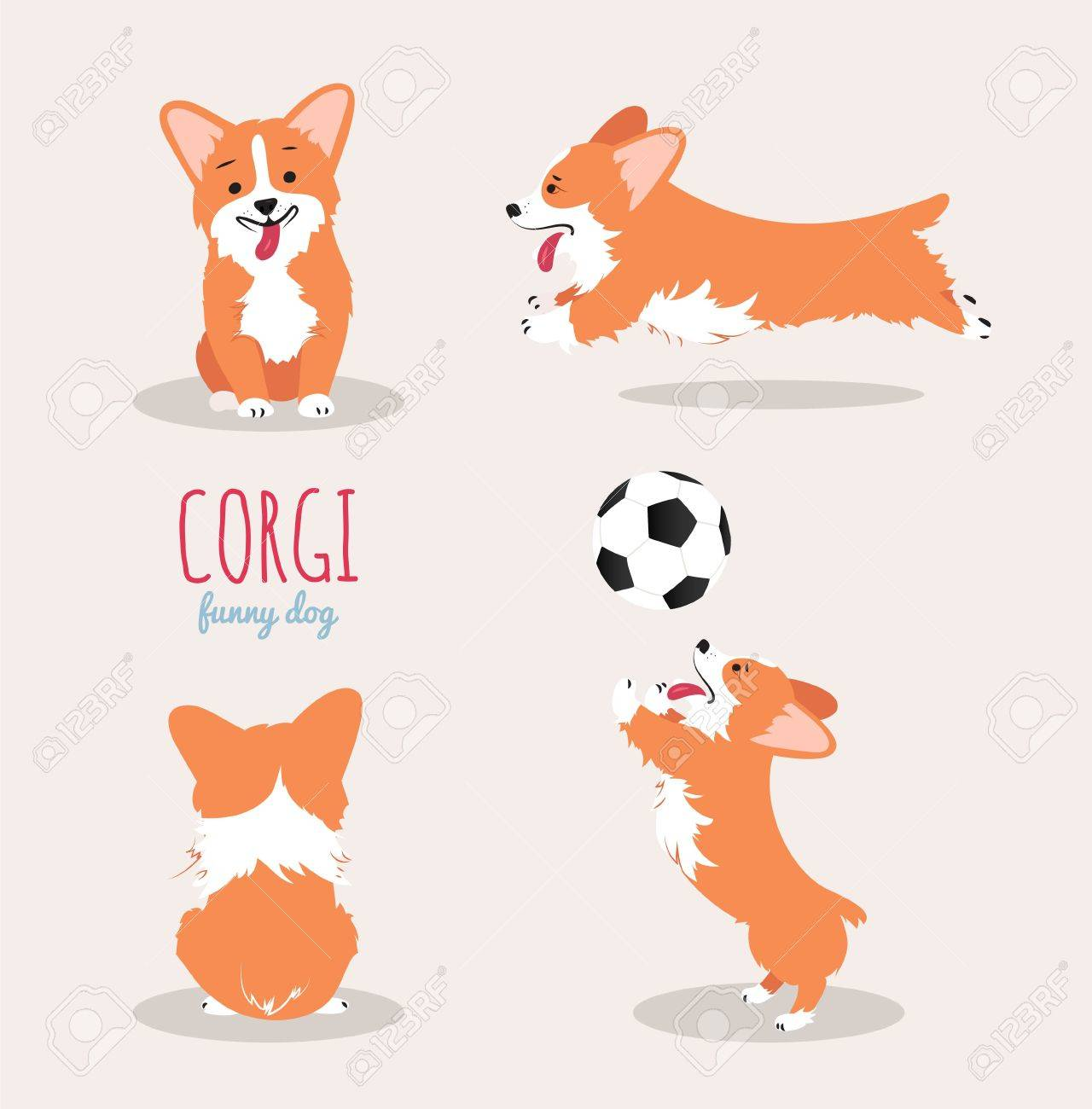 1,014 Welsh Corgi Cliparts, Stock Vector And Royalty Free Welsh.