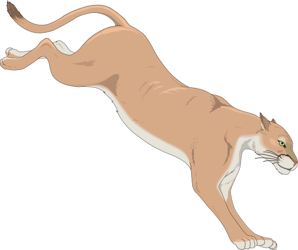 Animated cougar cub cute png clipart.