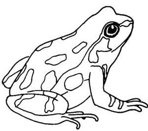 Frog black and white cute frog clip art black and white free clipart.