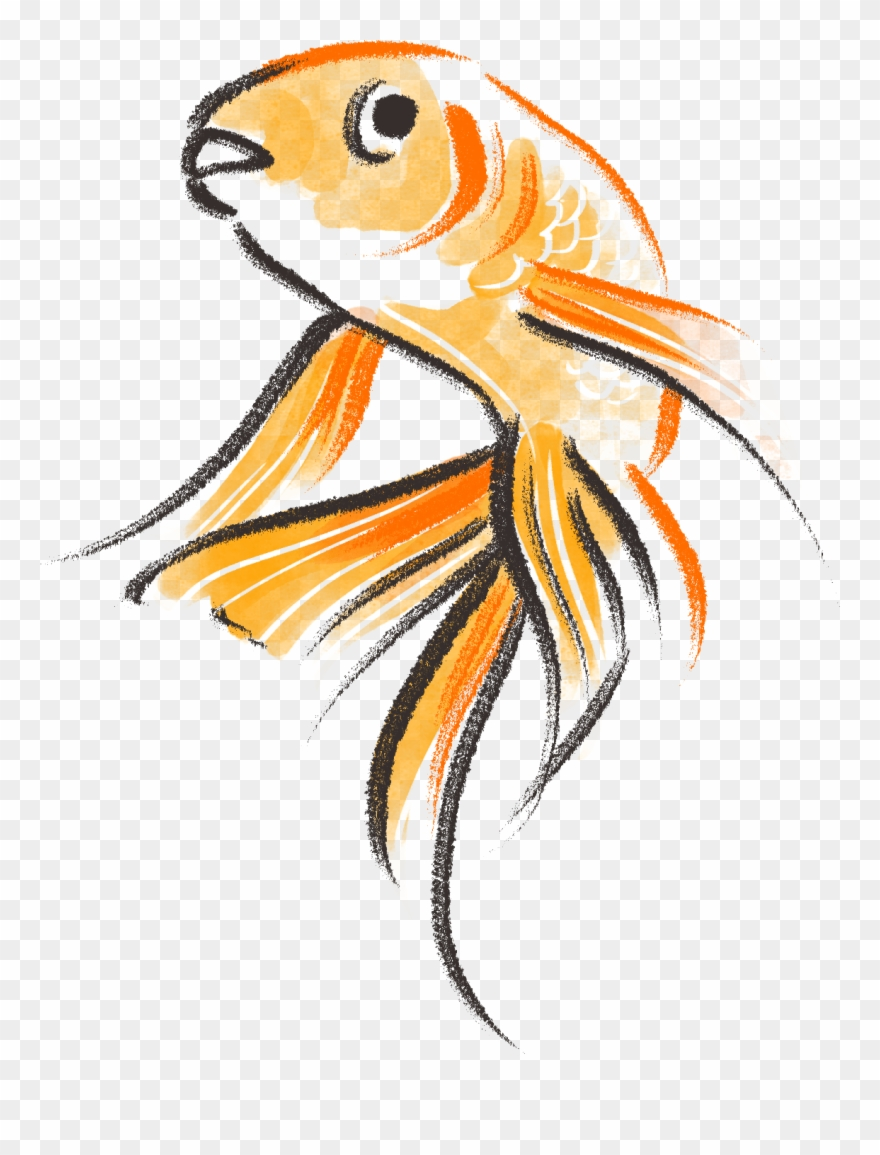Drawn Goldfish Cute Clipart (#2911495).