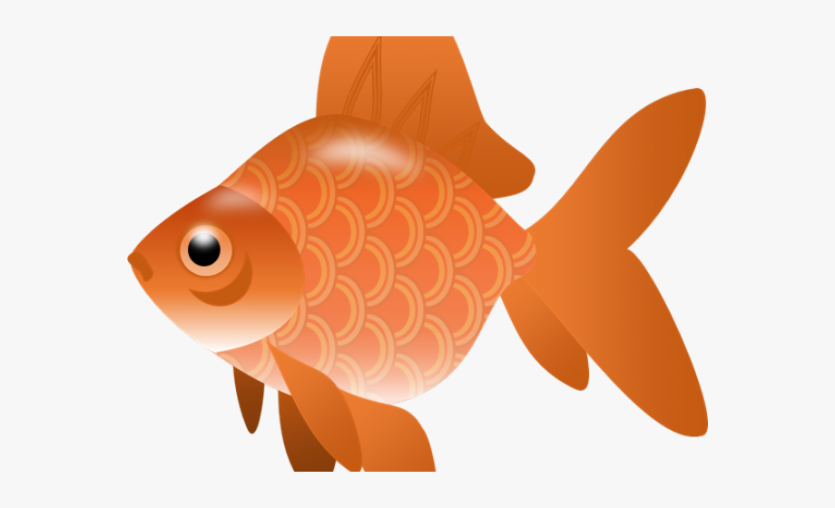 Goldfish Clipart Blank Fish.