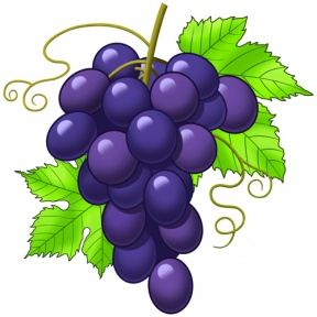 cute grapes clipart 20 free Cliparts | Download images on ...