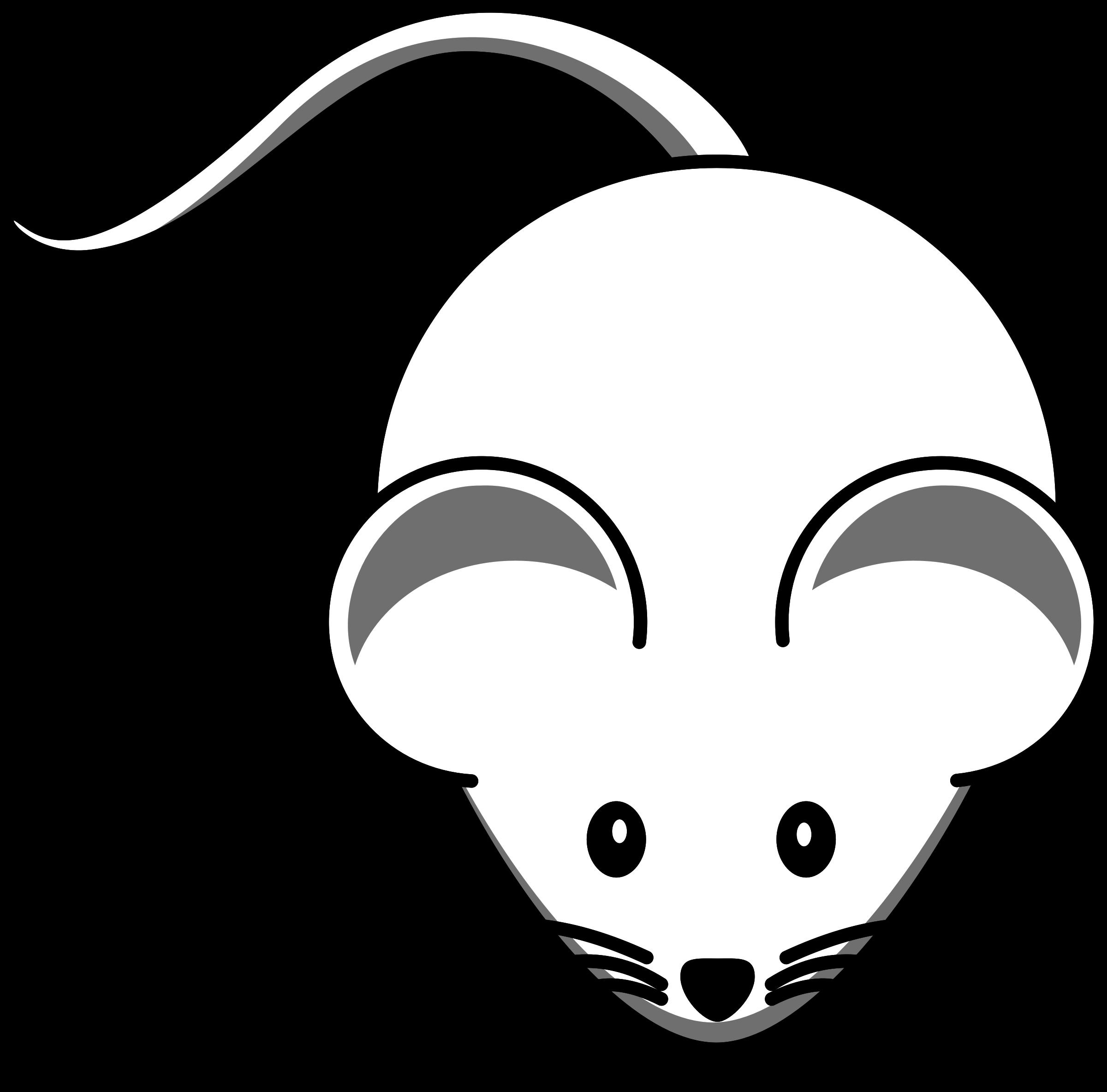 Cute Little Mouse.