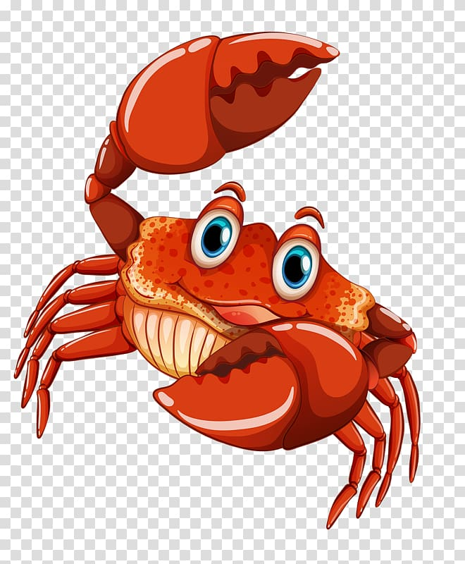 Red crab illustration, Dungeness crab Lobster , Meng cute.