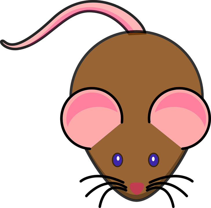 Rat Clipart Little Mouse.