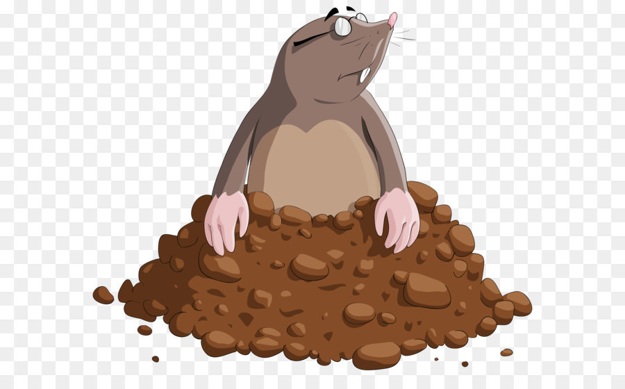 Mole Cartoon png download.