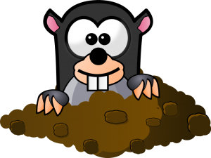 cute cartoon mole clip art.