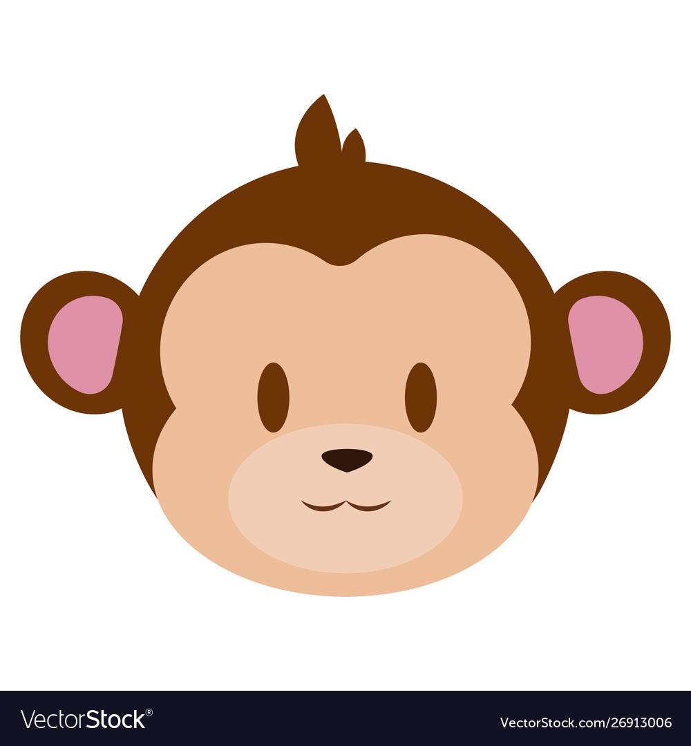 Cute monkey face.