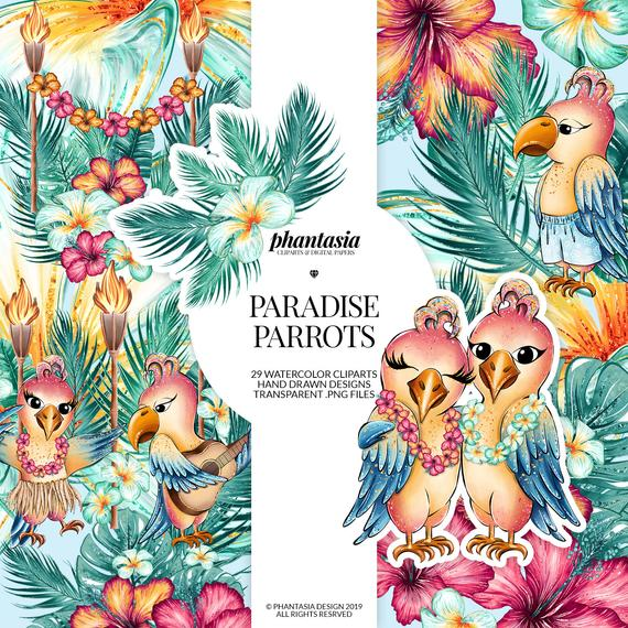 Cute Parrots Watercolor Cliparts, Summer Clipart, Summer Planner, Parrot  Cliparts, Cute Animals, Tropical Animals, Exotic Animals.
