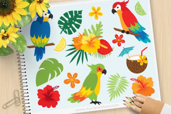 Tropical Parrot Clipart.