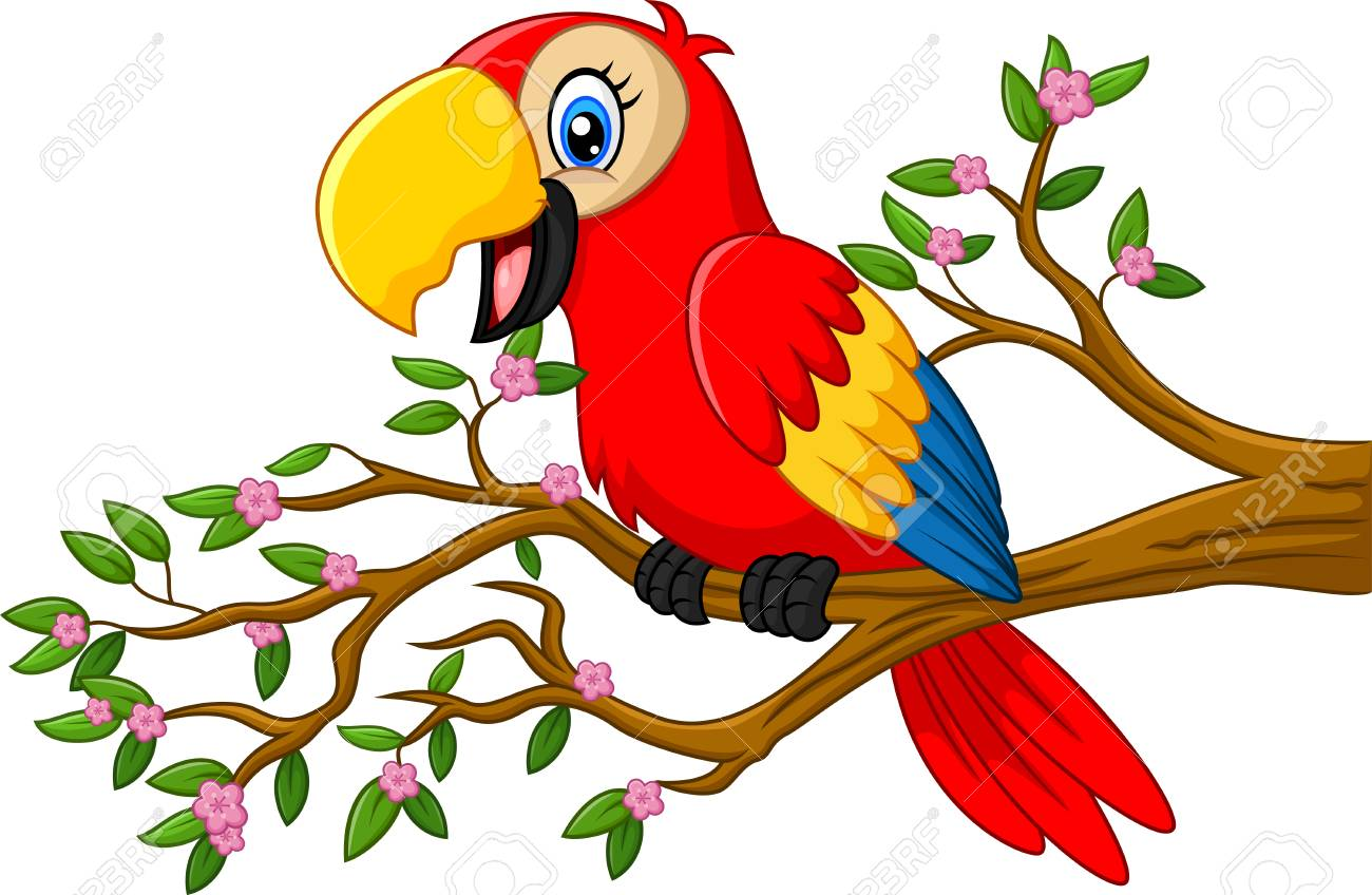 Cute parrot on the branch.