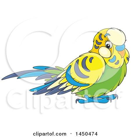 Clipart Graphic of a Cartoon Cute Pet Budgie Parakeet Bird.