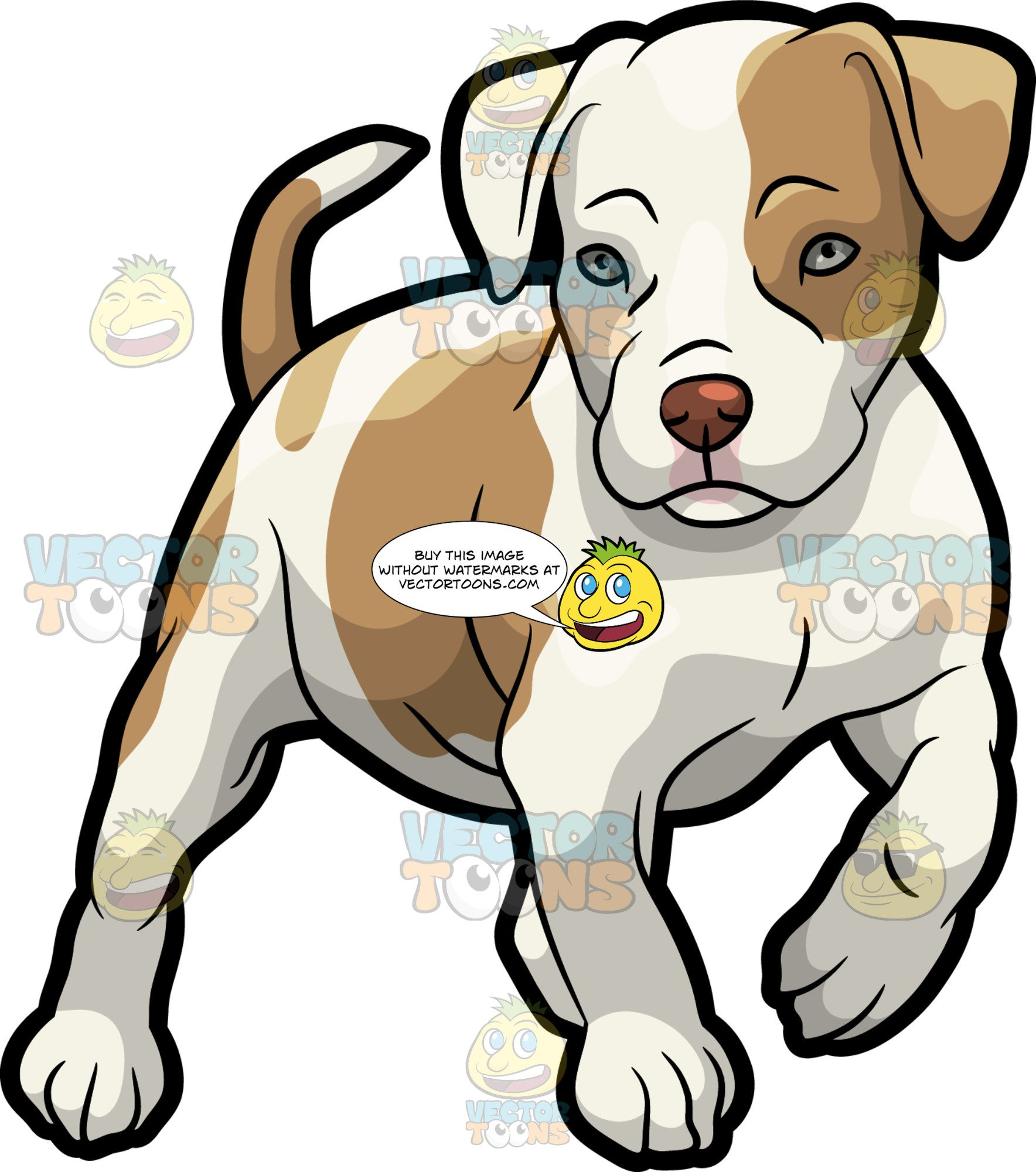 Pitbull Puppy Drawing.