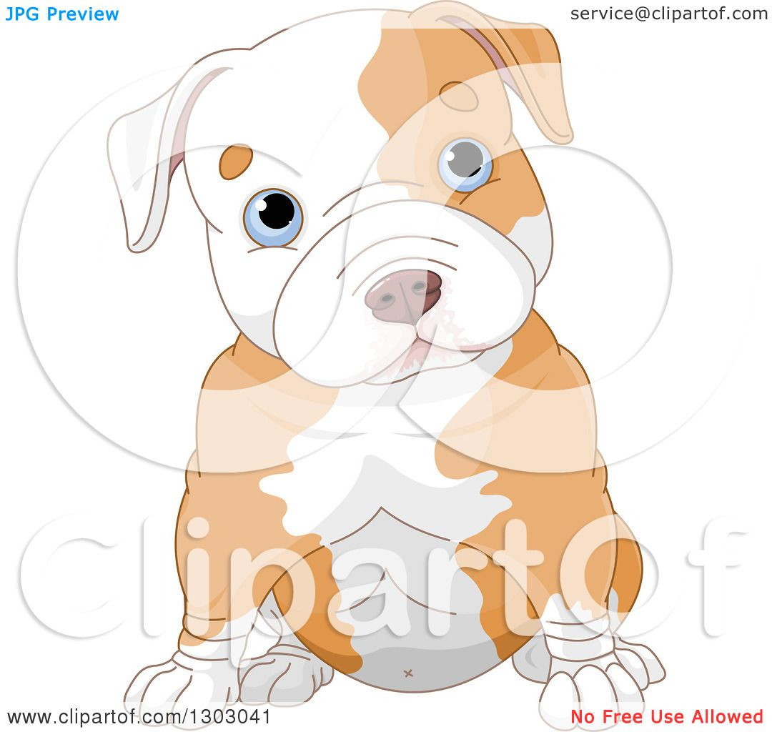 Clipart of a Cute Blue Eyed White Ad Tan Pitbull Puppy Dog Sitting.