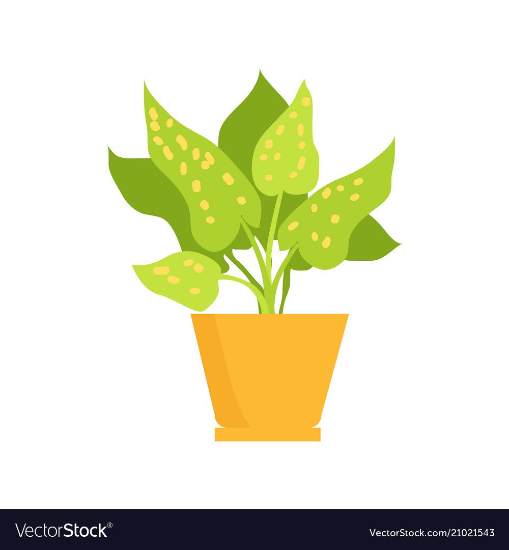 Cute plant in yellow pot.