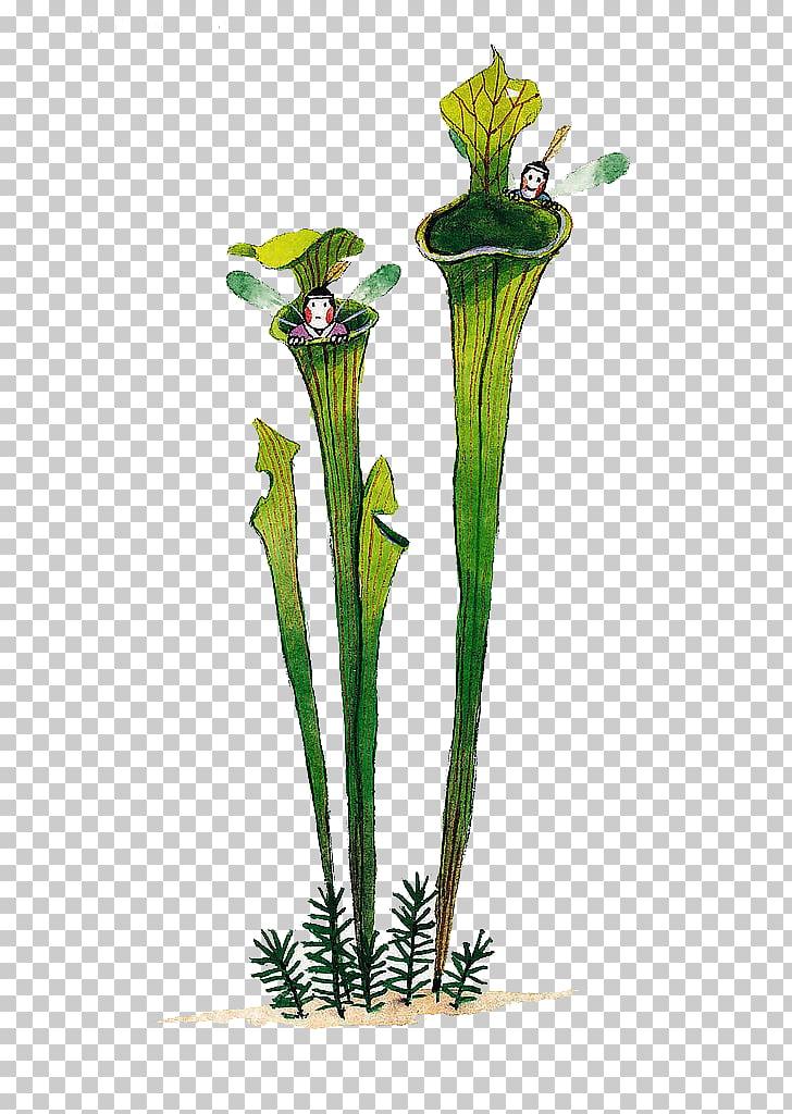 Floral design Plant Watercolor painting, Cartoon cute.