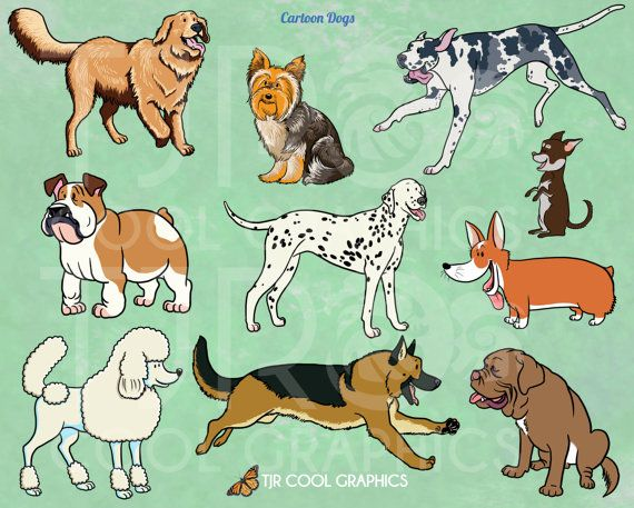 10 Best images about Cartoon Clipart on Pinterest.