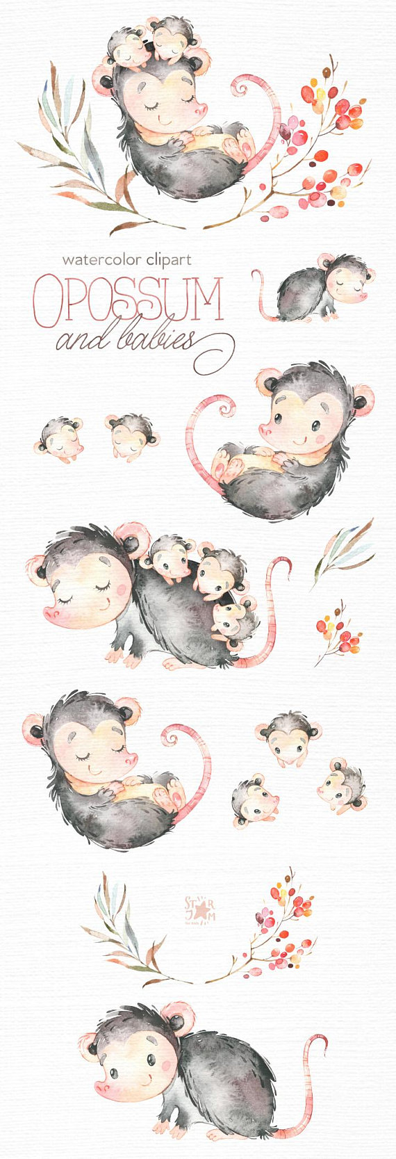 Opossum And Babies. Watercolor animals clip art, wild, native.
