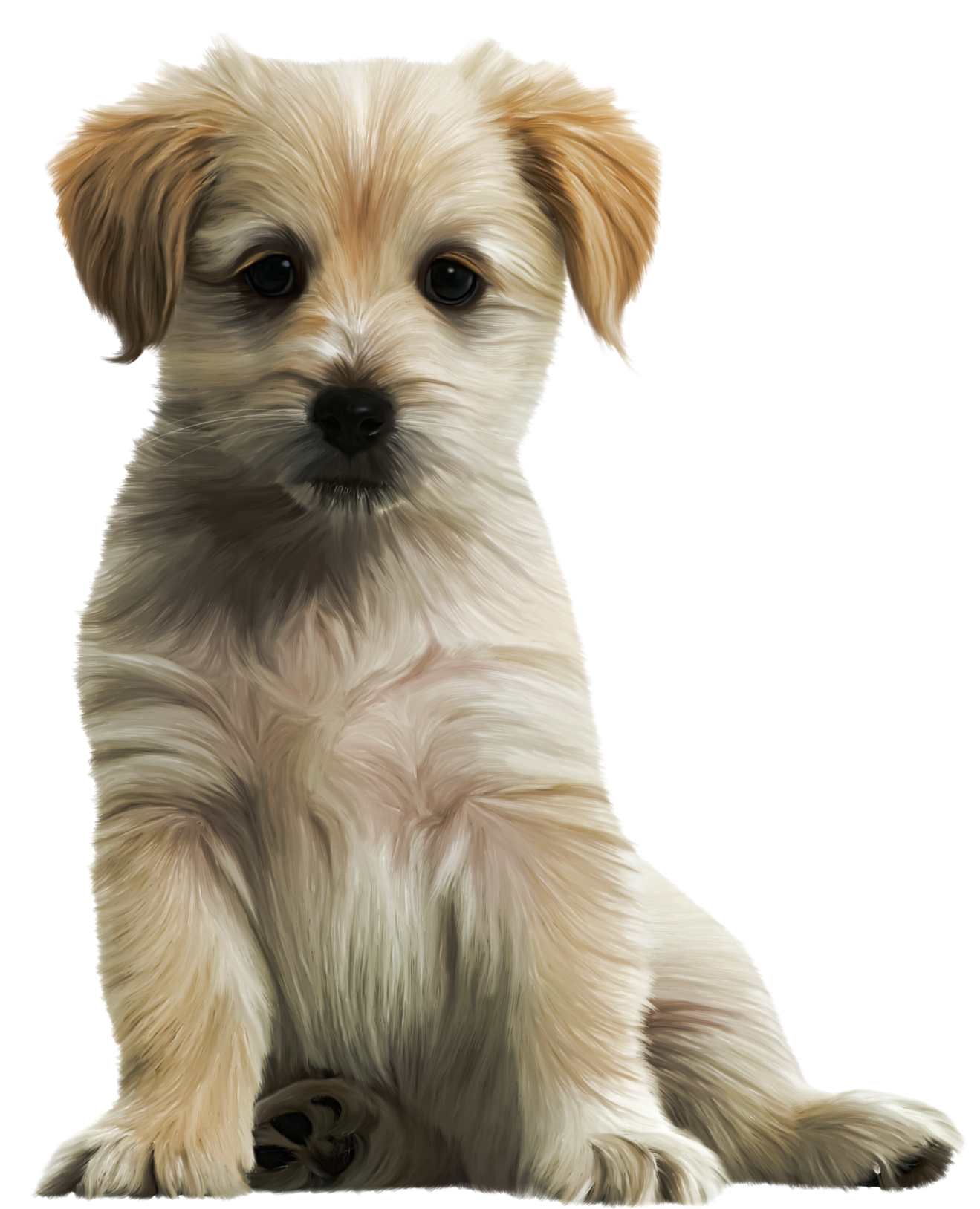 Cute Puppy PNG Clipart Image.