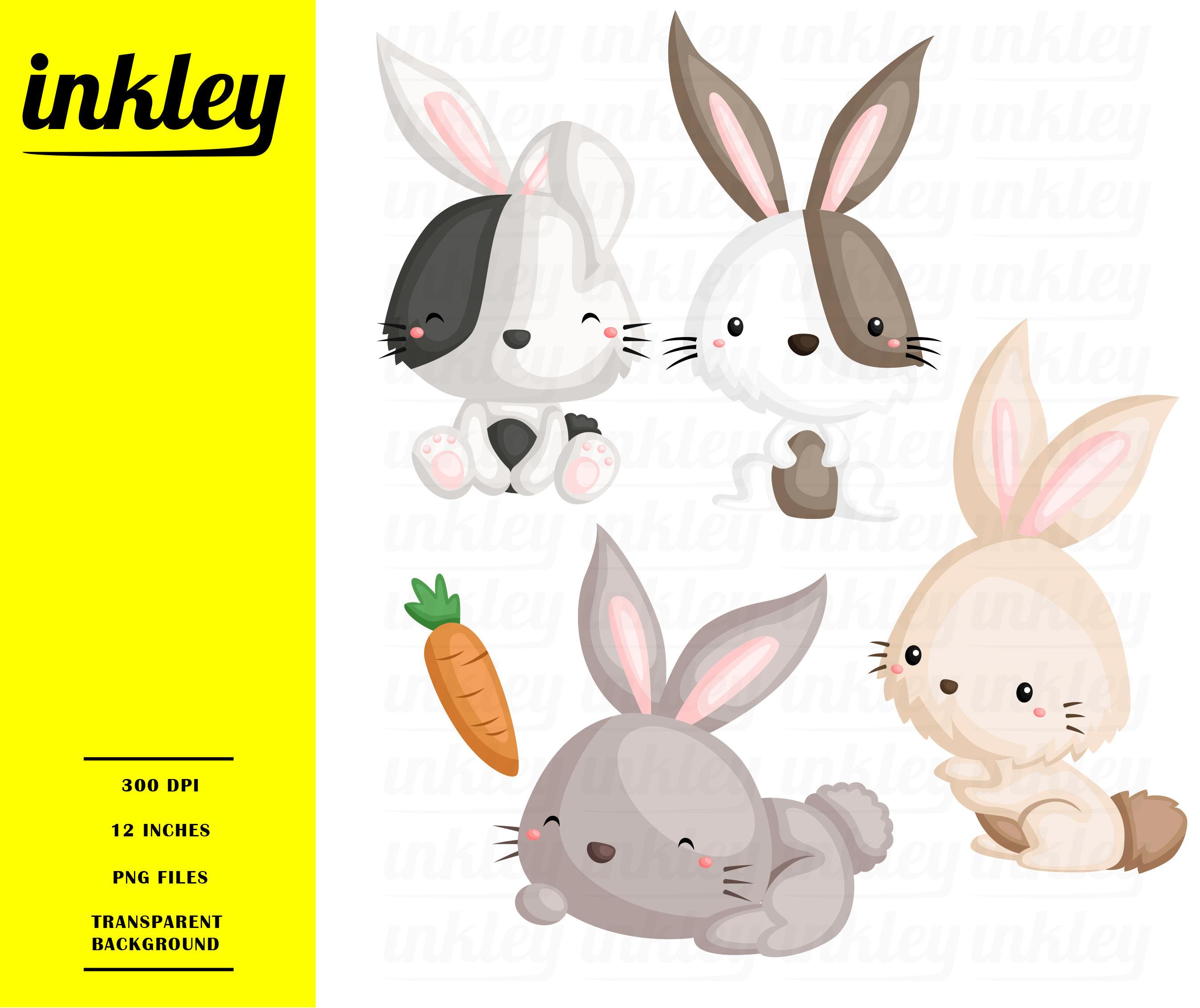 Cute Rabbit Clipart, Cute Rabbit Clip Art, Cute Rabbit Png, Rabbit Carrot  Clipart, Bunny Clipart, Cute Animal Clipart, Vegetable, Mammal.